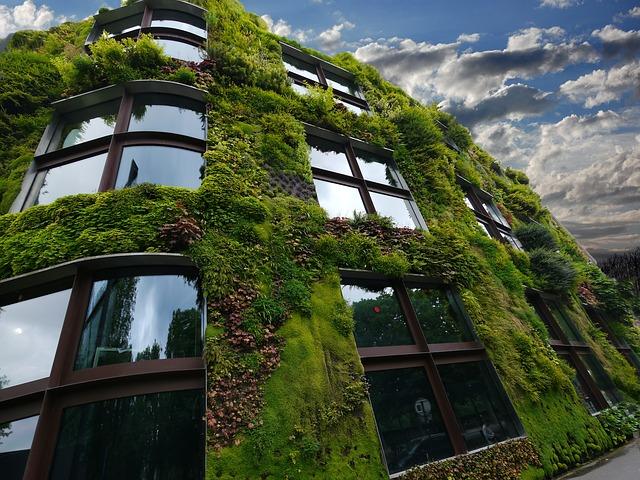 rostliny na budově