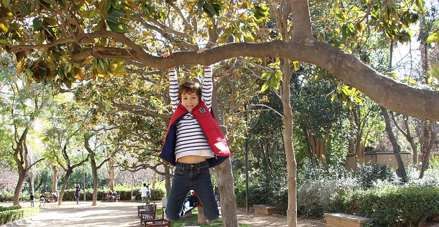 kluk na stromě