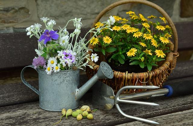 kropicí konev a květiny